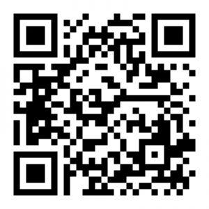 יאשי לוין כרטיס ביקור ר.שמאי