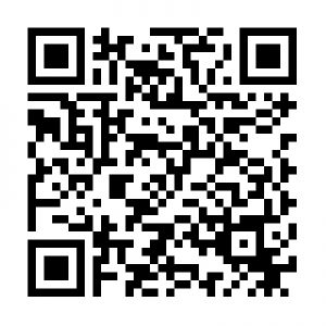 יניב שטיינברג כרטיס ביקור ר.שמאי